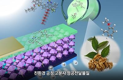 화공 박태호 교수팀, 고소한 호두향으로 태양전지 만든다